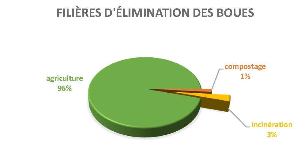 Elimination des boues